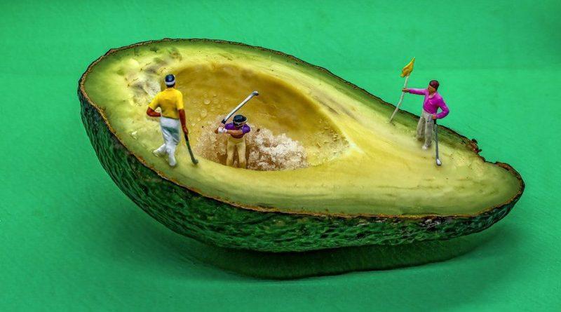 фото Jacki Gordon авокадо
