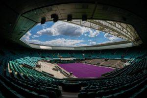 фиолетовый стадион