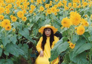 A still from Yayoi Kusama's Flower Obsession (Sunflower) Collection of Yayoi Kusama, courtesy of the NYBG