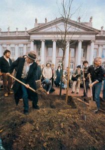 Йозеф Бойс высаживает дуб во время акции «7000 дубов» в Касселе, Германия