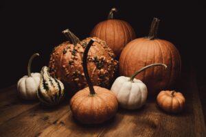 Готовимся заранее: где брать тыкву к Хэллоуину