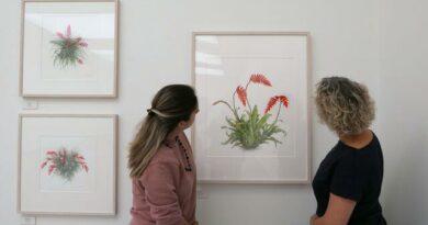 На выставке в галерее Саатчи представлено более 200 ботанических иллюстраций и фотографий. 15 художников и 19 фотографов, боролись за получение международной премии, ежегодно присуждаемой королевским садоводческим обществом, –– мемориальной медали Вейча.