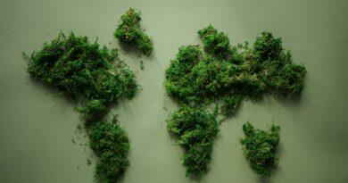 «Зеленое» настроение британского правительства и короны